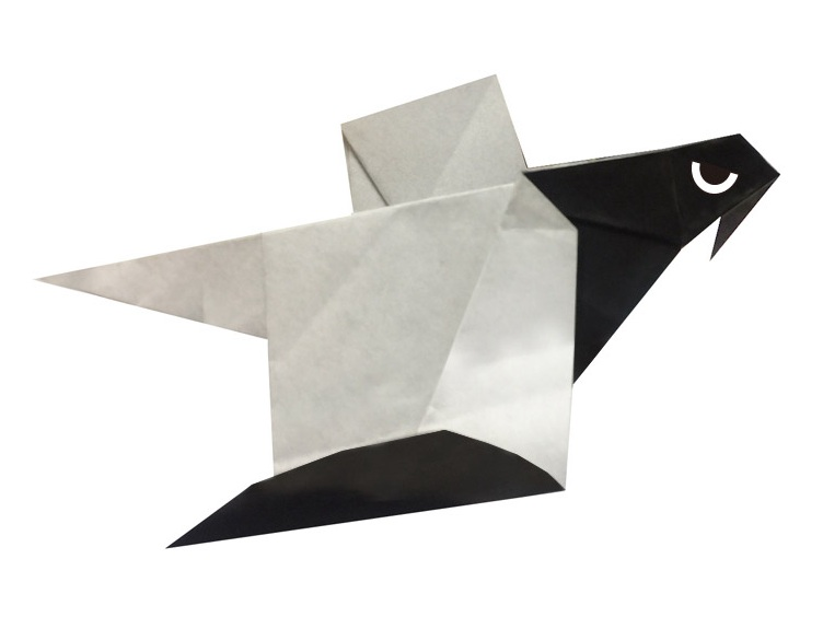 How to Fold an Origami Eagle | 564x752
