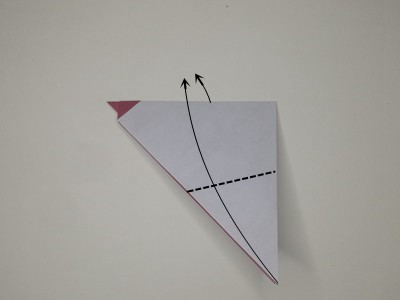 origami-rooster-Step 9